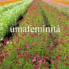 UMAFEMINITA', invito alla sua fondazione, di Nadia Cavalera