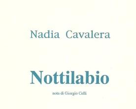 """Francesco Muzzioli: """"L' """"onirismo politico"""" di Nadia Cavalera"""""""
