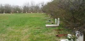 Cimitero degli animali, a Villa Cella (RE), distrutto all'insaputa di chi pagava il servizio