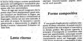 """Vincenzo Jacovino su """"Amsirutuf: enimma"""", «Puglia» , 2 giugno 1988"""