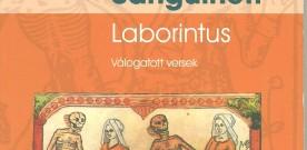 Edoardo Sanguineti, Laborintus, selezione a cura e traduzione di Irén Kiss