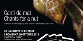 Canti da mat – Chants for a nut, a Campogalliano
